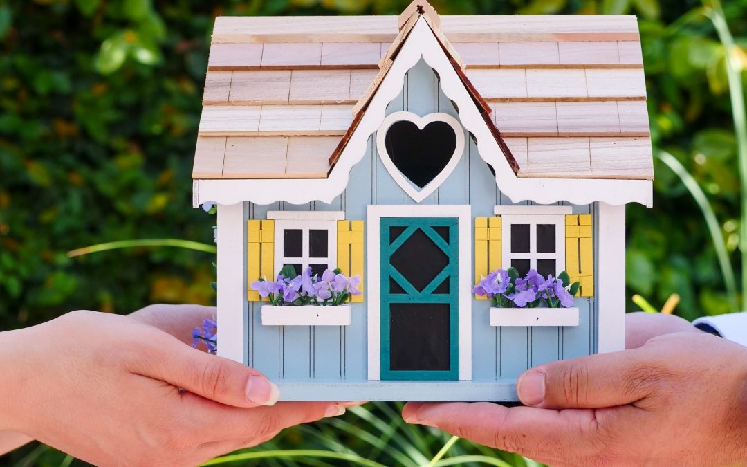 Spring tips for the home